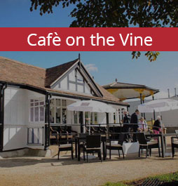 Cafe on the Vine