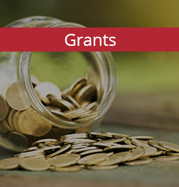 Grants for Local Voluntary Organisations