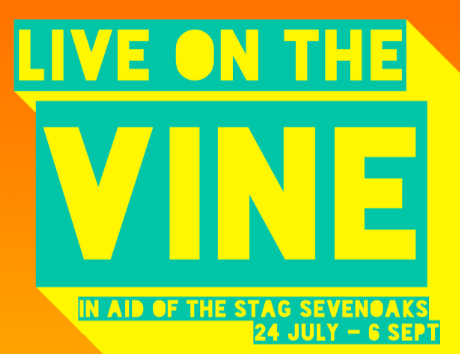 Socially Distanced Live On The Vine 2020 in aid of Stag Sevenoaks